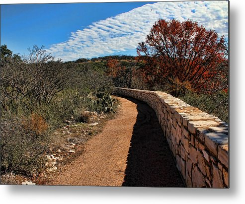 Reimer's Ranch Metal Print featuring the photograph Trail At Reimer's Ranch by Judy Vincent