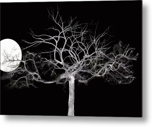 Tree Metal Print featuring the photograph You Hung The Moon by Gray Artus
