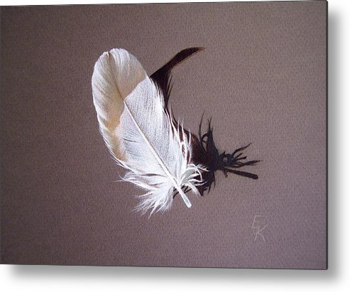 Still Life Metal Print featuring the drawing Feather And Shadow 1 by Elena Kolotusha