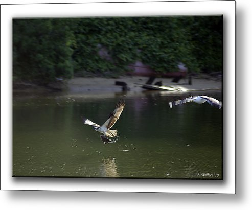 2d Metal Print featuring the photograph Mine by Brian Wallace