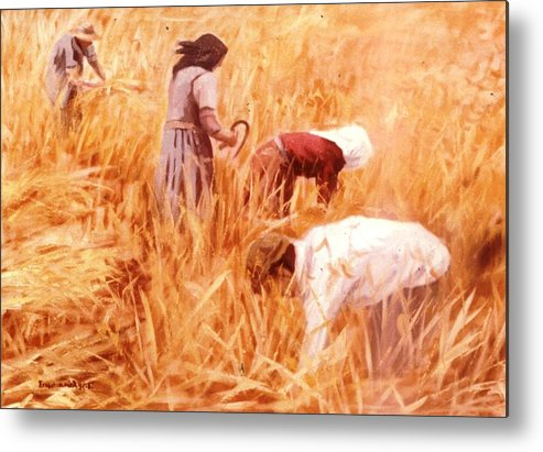 Harvest.mowing Harvest.summer Mowing Metal Print featuring the painting Mowing Harvest by George Siaba