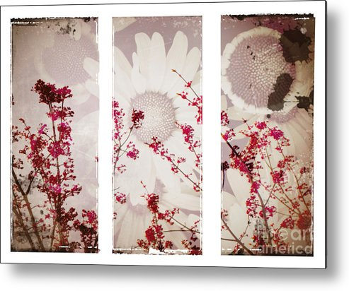 Flowers Metal Print featuring the photograph New Beginnings by Tara Turner