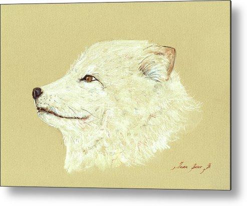 Arctic Fox Metal Print featuring the painting Polar Fox Portrait by Juan Bosco