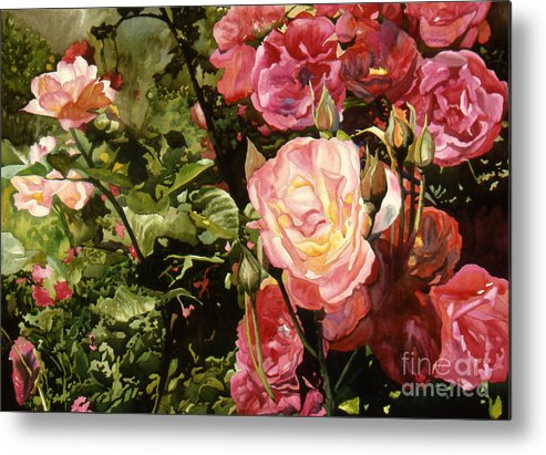 Watercolor Metal Print featuring the painting Rose Garden by Teri Starkweather
