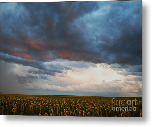 Storms Metal Print featuring the photograph Song Of Moses by Kevin Albright