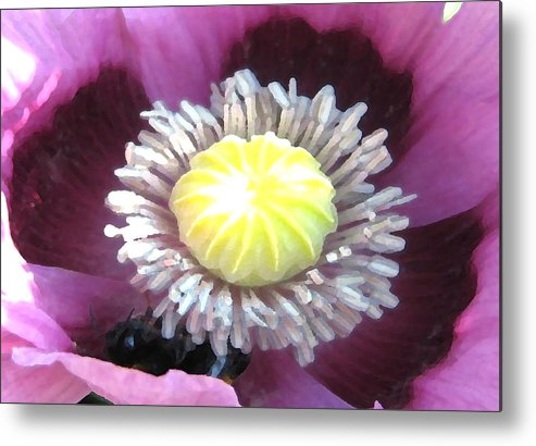 Flower Metal Print featuring the photograph Stigma by Vicky Brago-Mitchell