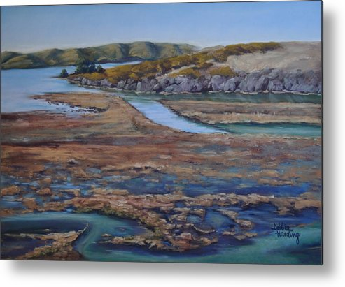 Bay Metal Print featuring the painting Tomales Bay Tangents by Debbie Harding