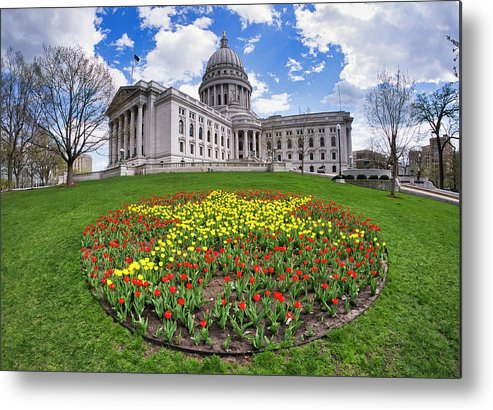 Wi Metal Print featuring the photograph Wisconsin Capitol And Tulips by Steven Ralser