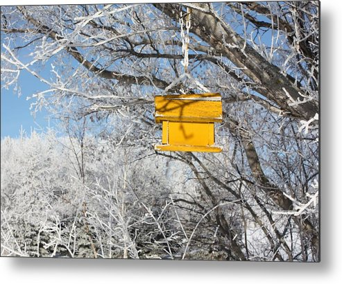 Bird House Metal Print featuring the photograph Yellow Bird House by Pat Purdy