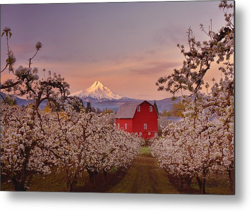 Sunrise Metal Print featuring the photograph Hood River Sunrise by Darren White