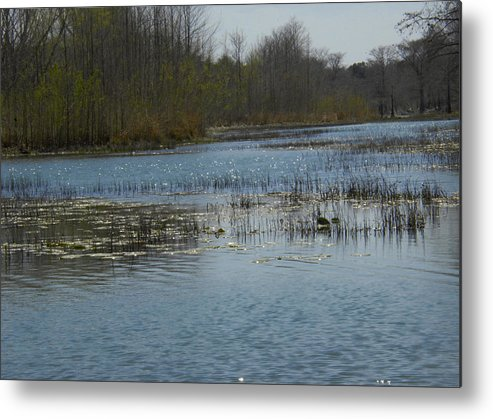 Metal Print featuring the photograph River Bend by Ricky Cerda