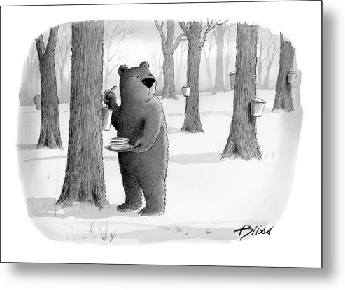Bear Metal Print featuring the drawing New Yorker April 2nd, 2007 by Harry Bliss