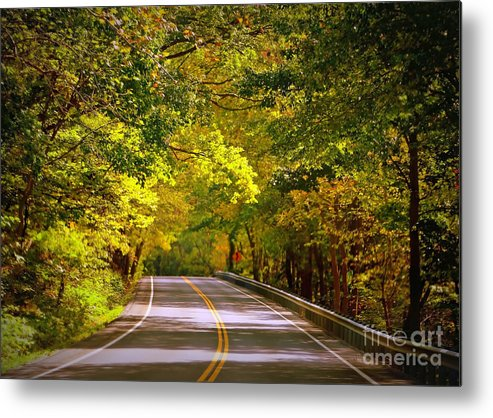 Autumn Road Metal Print featuring the photograph Autumn Road by Carol Groenen