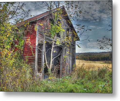 Shed Metal Print featuring the digital art Extra Storage by Sharon Batdorf