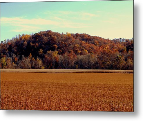 Fall Colors Metal Print featuring the photograph Fall Fields by Libby Saunders