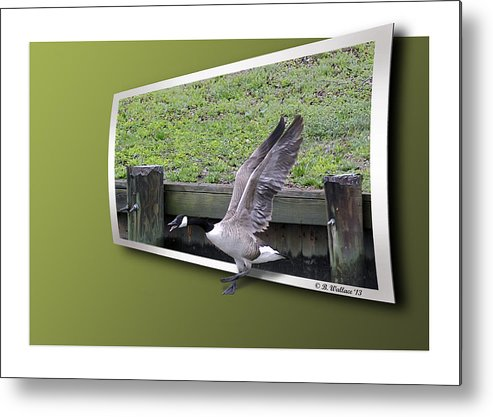 2d Metal Print featuring the photograph Free At Last by Brian Wallace