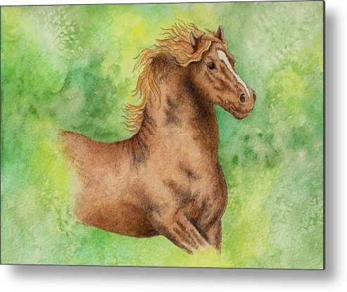 Watercolor Metal Print featuring the painting Green by Jodi Bauter