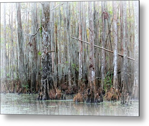 Louisiana Metal Print featuring the photograph Magical Bayou by Carol Groenen