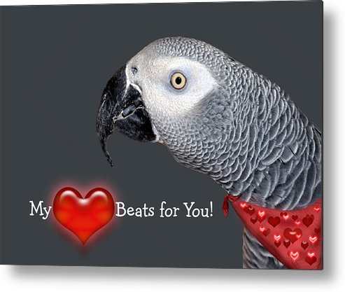 Bird Metal Print featuring the mixed media My Heart Beats For You by Donna Proctor