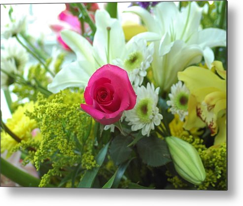 Floral Metal Print featuring the photograph Pink Rose by M West