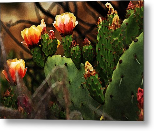 Plants Metal Print featuring the photograph Prickly Pear In Bloom by Joe Bledsoe