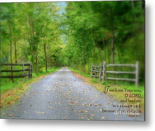 Path Metal Print featuring the photograph Smooth Paths by Debra Straub