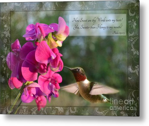 Nature Metal Print featuring the photograph Sweet Pea Hummingbird Iv With Verse by Debbie Portwood