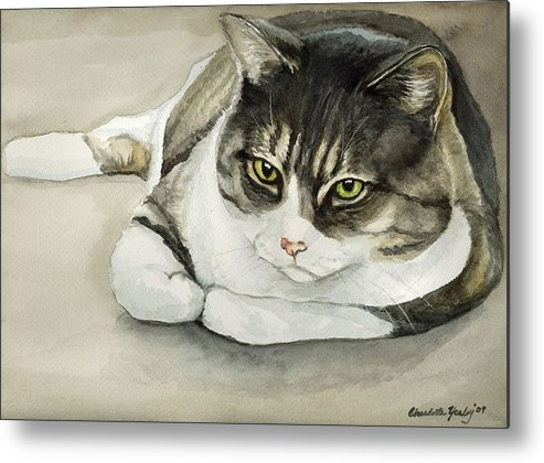 Cat Metal Print featuring the painting Tubby by Charlotte Yealey