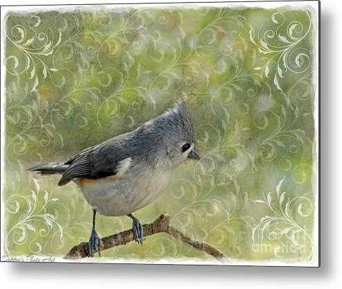 Nature Metal Print featuring the photograph Tufted Titmouse With Decorations by Debbie Portwood