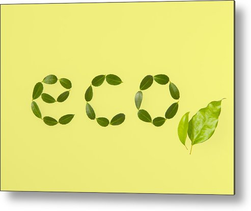 Horizontal Metal Print featuring the photograph Word eco Made Of Leaves by sozaijiten/Datacraft
