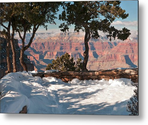 Juniper Trees Metal Print featuring the photograph 10398 Twisted Junipers by John Prichard