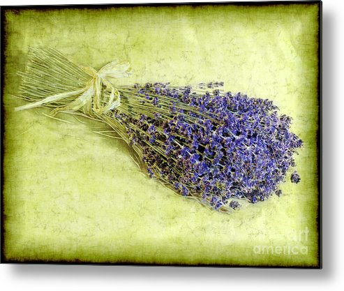 Lavender Metal Print featuring the photograph A Spray Of Lavender by Judi Bagwell