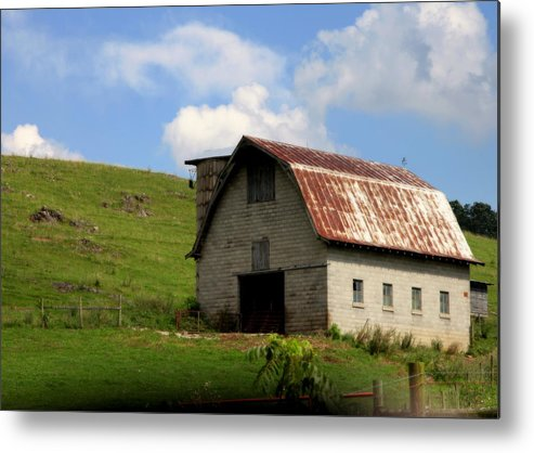 Landscapes Metal Print featuring the photograph Faded Generations by Karen Wiles