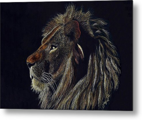 Lion Metal Print featuring the drawing Kingly by Jaqui Michells