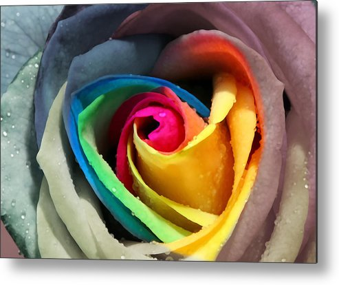 Love Metal Print featuring the digital art Lover's Rose by Michele Goycoolea