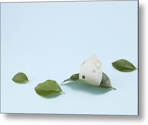 Horizontal Metal Print featuring the photograph Miniature House And Leaves (ecology Image) by sozaijiten/Datacraft