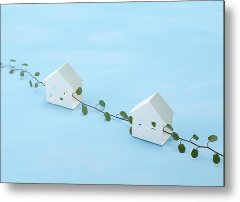 Horizontal Metal Print featuring the photograph Miniature Houses And Wire Vine (ecology Image) by sozaijiten/Datacraft