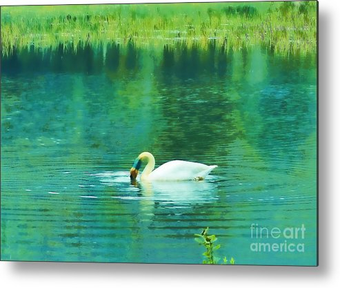 Swan Metal Print featuring the photograph Swan Lake by Judi Bagwell