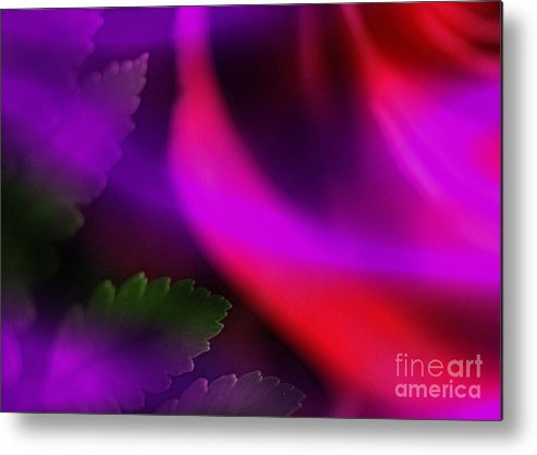 Leaf Metal Print featuring the photograph The Leaf And The Rose by Judi Bagwell