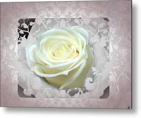 Dusty Pink Rose Metal Print featuring the photograph Wedding Rose Collection by Debra   Vatalaro