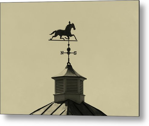 Barn Metal Print featuring the photograph Bird Direction by JAMART Photography
