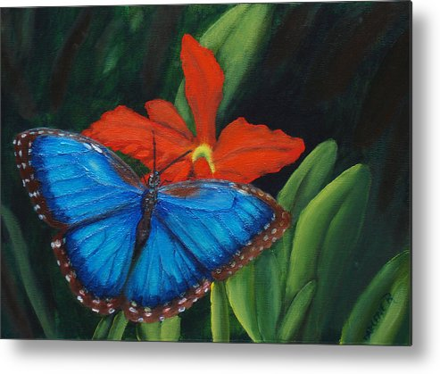 Butterfly Metal Print featuring the painting Blue Morph by Darlene Green