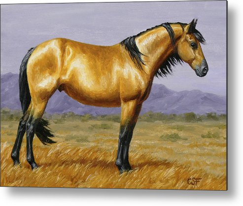 Horse Metal Print featuring the painting Buckskin Mustang Stallion by Crista Forest