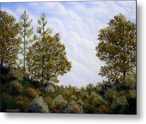 Landscape Metal Print featuring the painting Clouds In Foothills by Frank Wilson