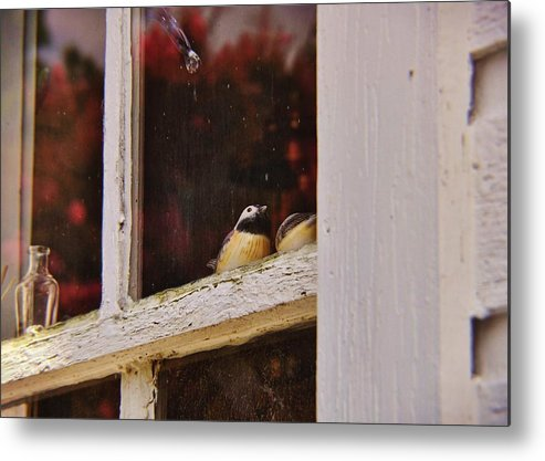 Window Metal Print featuring the photograph Collectibles by JAMART Photography