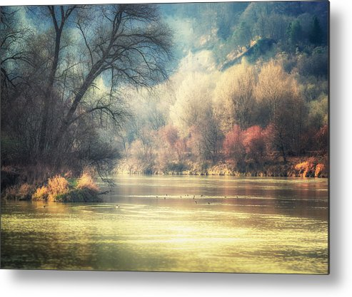 Landscape Metal Print featuring the photograph Confluence by Alexander Kunz