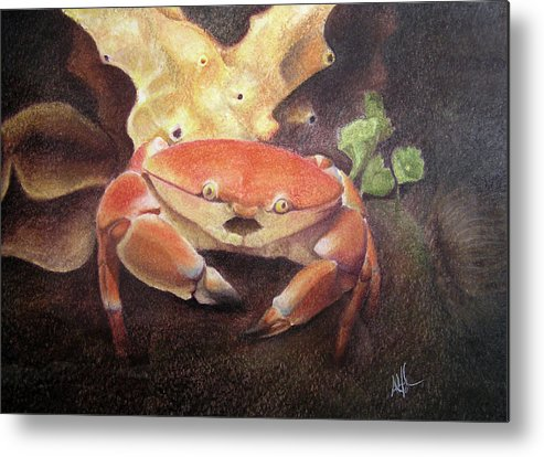 Animals Metal Print featuring the painting Coral Crab by Adam Johnson