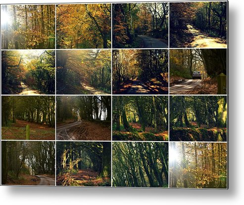 Fall Metal Print featuring the photograph Fall - A Montage by Andy Thompson
