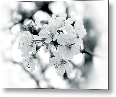 Black And White Metal Print featuring the photograph Feelings by Angie Tirado