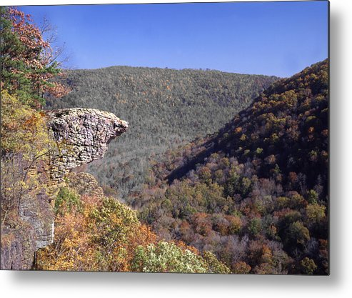 Hawksbill Crag Metal Print featuring the photograph Hawksbill Crag by Curtis J Neeley Jr